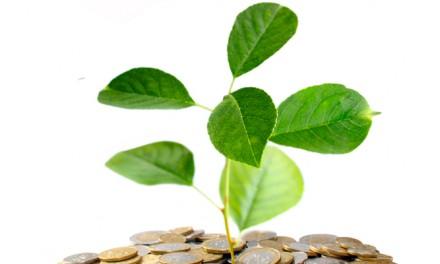 Claves de la Ley de Apoyo a los Emprendedores